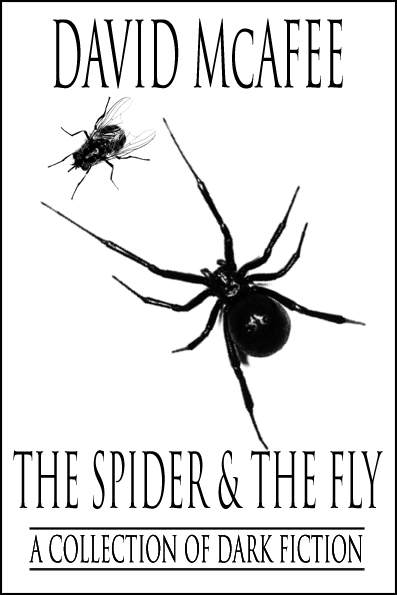 The Spider and the Fly - Chapbook Cover - Small